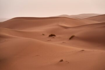 What are Dunes